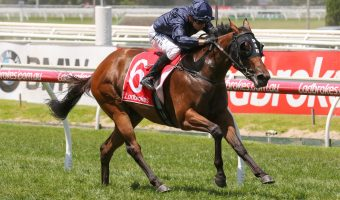 Ladbrokes Blue Diamond Stakes 2018 Tips & Odds Update