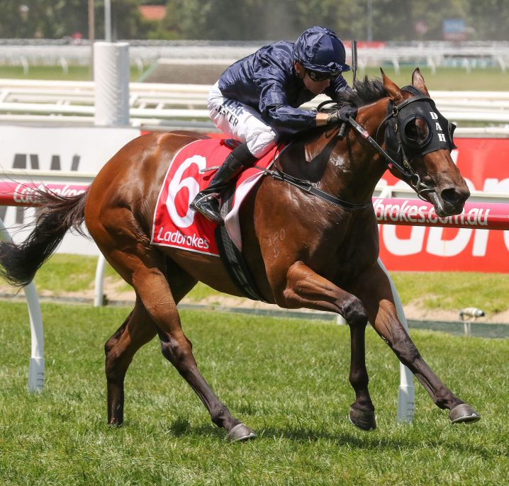 2018 Ladbrokes Blue Diamond Stakes Form Guide & Betting Preview