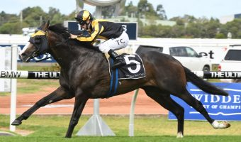2018 Hobartville Stakes Betting Tips & Update
