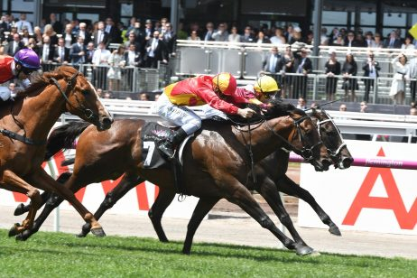 Levendi Tops 2018 Autumn Stakes Field & Betting