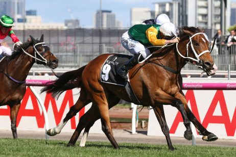 Futurity Stakes 2018 Form Guide & Betting Preview