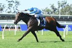 2018 Tattersall's Club Tiara: Emergencies not needed, Prompt Response new favourite