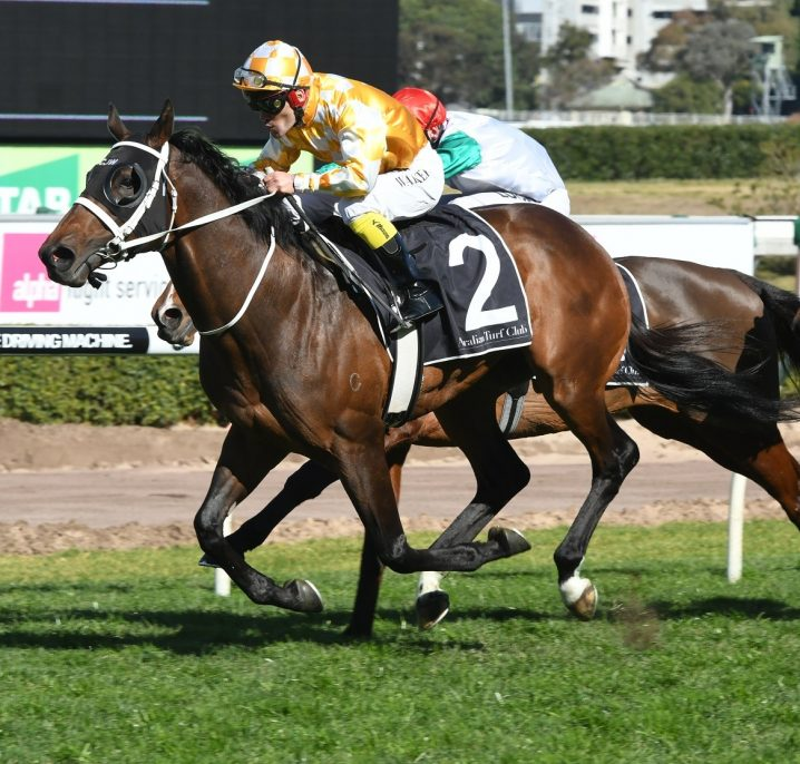 2018 Doomben Cup winner Comin' Through beats stablemate Egg Tart