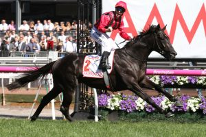 Victoria Derby 2020 Nominations: Alcyone On Top of All-In Betting