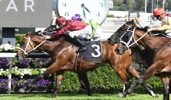 Winx Free 2018 Apollo Stakes Results: Waller Wins with Endless Drama