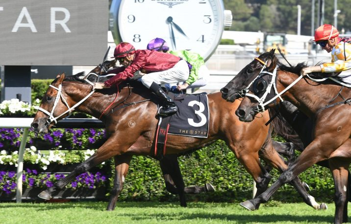 Endless Drama Danger Fresh in 2019 Winterbottom Stakes