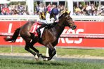 Lord Fandango Tightened Up Ahead of Zipping Classic