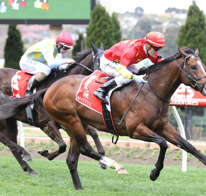 Russian Revolution Leads 2018 Ladbrokes Oakleigh Plate Nominations