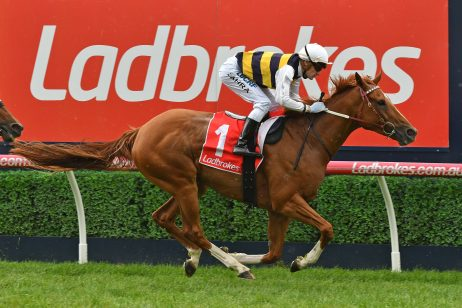 2018 Peter Young Stakes Field & Odds: Hartnell v Gailo Chop