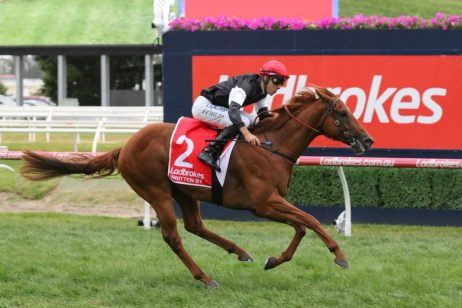Written By Is The 2018 Ladbrokes Blue Diamond Stakes Winner