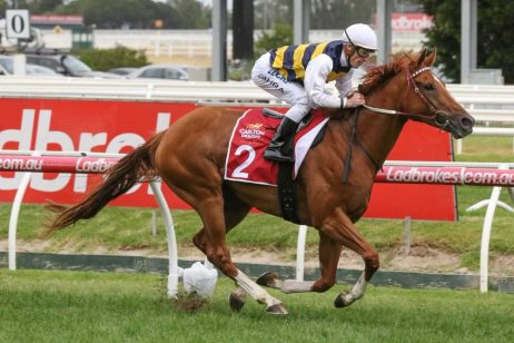 2018 Peter Young Stakes Winner Gailo Chop onto Australian Cup