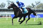 Kementari in great order to take on Winx in 2018 Winx Stakes