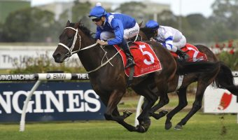 Winx Ready To Shine At Home in 2018 George Ryder Stakes