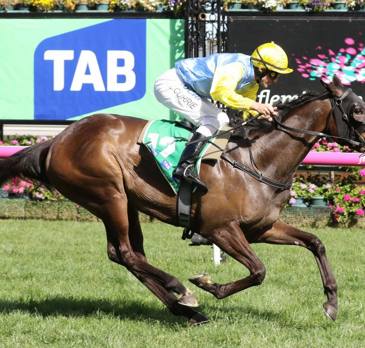 2018 Australasian Oaks Nominations Feature Bring Me Roses