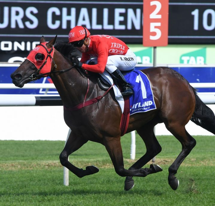 Redzel Gears Up for 2018 Doomben 10,000