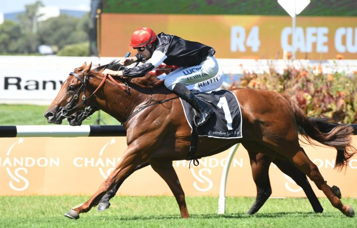 2018 Golden Slipper Betting Update: Sunlight vs Written By