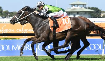 Unforgotten To Vinery Stud Stakes After Phar Lap Stakes Win