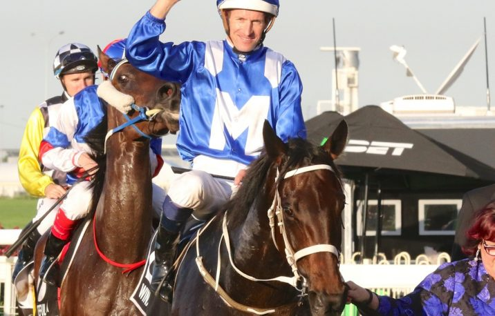Hugh Bowman Fit to Ride Winx Next Race: 2018 George Ryder Stakes