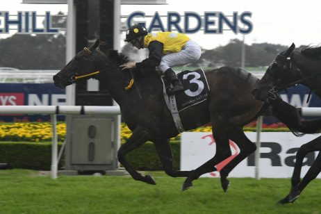 In Her Time Targets 2018 The Everest After Brisbane Winter