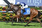 El Dorado Dreaming of 2018 VRC Oaks Bid