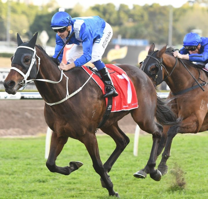 2020 Winx Guineas Day: Sunshine Coast Scratchings & Track Report