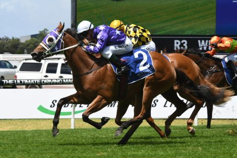 2018 Percy Sykes Stakes Field & Odds: Pure Elation Firming Favourite