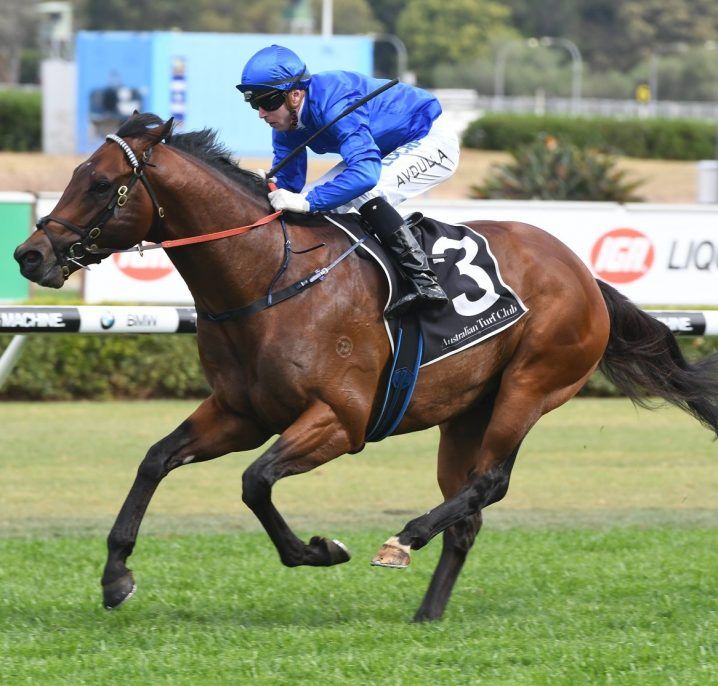 2020 Sir John Monash Stakes Field & Betting: Viridine Short Favourite