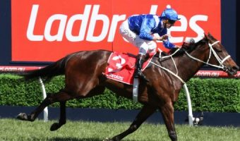 Winx kicks off 2018 Cox Plate defence with Rosehill barrier trial