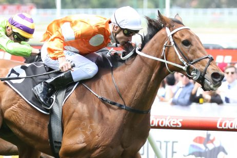 Melbourne Cup: Can Who Shot TheBarman Break Barrier 18 Hoodoo?