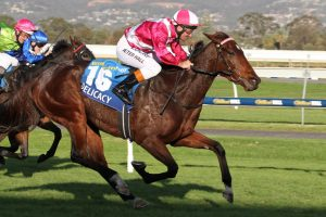 Delicacy ridden by Peter Hall. Photo: Jenny Barnes - Races.com.au