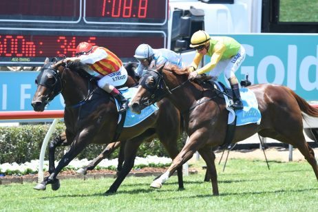 JHB Carr Stakes 2018 Field & Betting: So Far Sokool Top Fancy