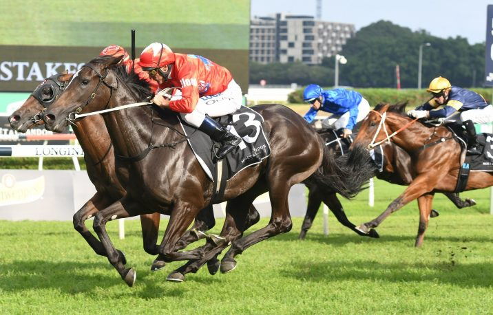 2018 Champagne Stakes Results: Seabrook Beats the Boys