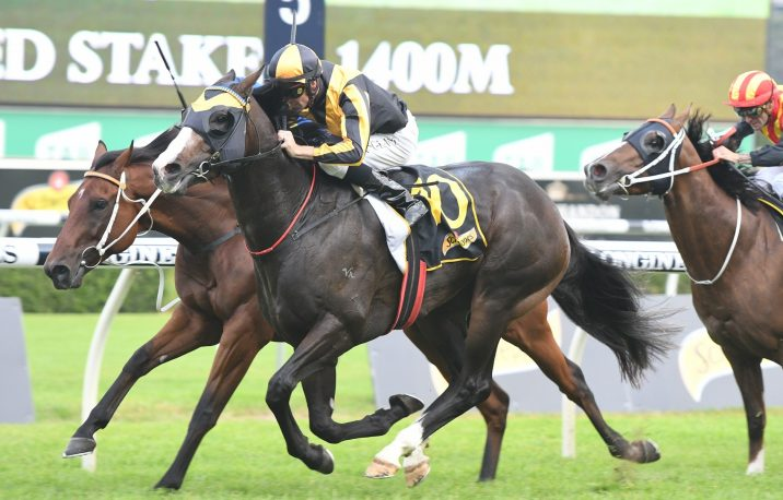 2018 All Aged Stakes Results: Trapeze Artist Wins Again