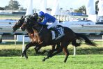 Impending adds value to stud career with 2018 Kingsford-Smith Cup win