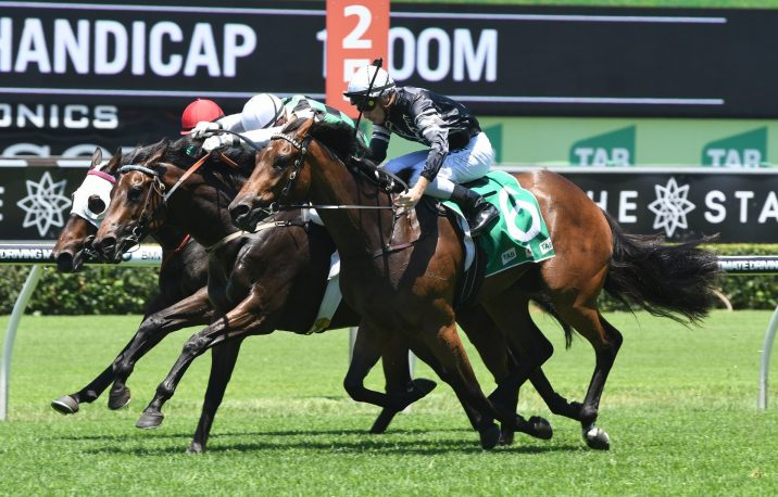 2020 Victory Stakes Results: Stradbroke Handicap Next for Victorem
