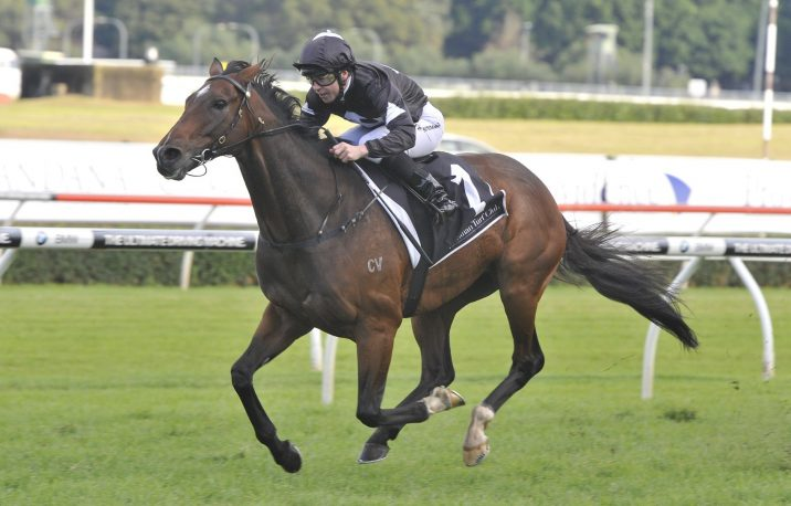 Final field of 11 for 2018 Ipswich Cup