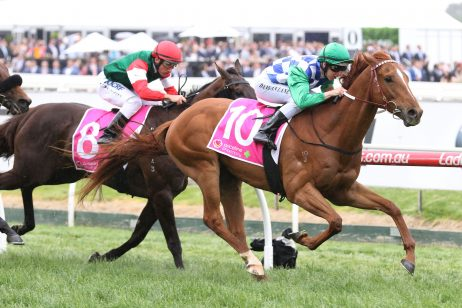 Weir Set to Swarm on Ballarat Cup With Host of Runners