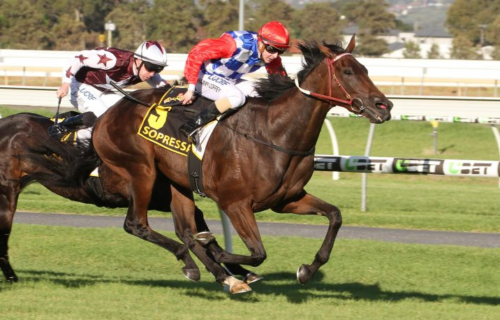 2019 Ipswich Cup Odds: Mask Of Time Revealed As Early Favourite