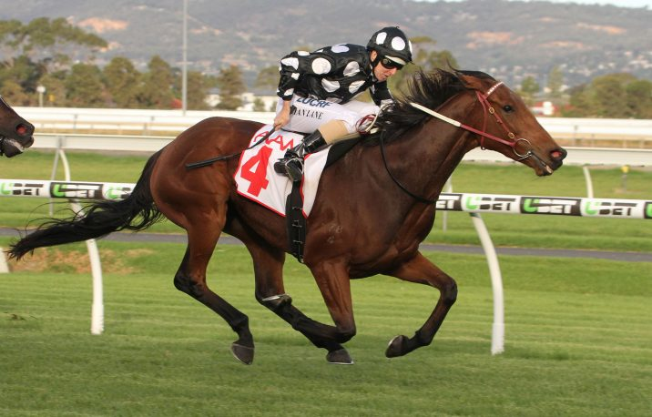 Leicester Is The South Australian Derby 2018 Winner for Weir