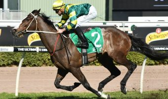 George Moore Stakes: Care To Think Set For Relaxing Ride