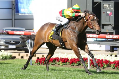 Weir's pair puts plenty of quality into 2018 Eye Liner Stakes nominations