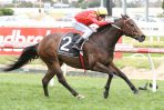 Voodoo Lad wins 2018 Winterbottom Stakes