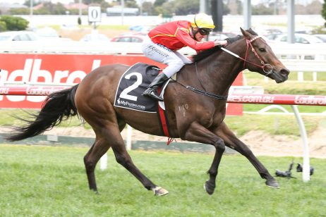 Weir Trumps 2019 Australia Stakes nominations with six