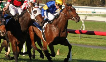 Santa Ana Lane to chase Stradbroke Handicap after 2018 Goodwood win