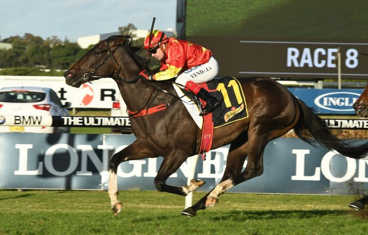 Calanda to carry top weight in 2018 W.J. Healy Stakes