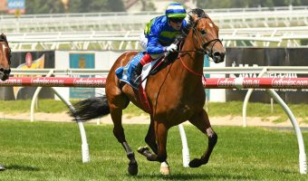 Plenty of money for Jukebox in 2018 Sir John Monash Stakes betting