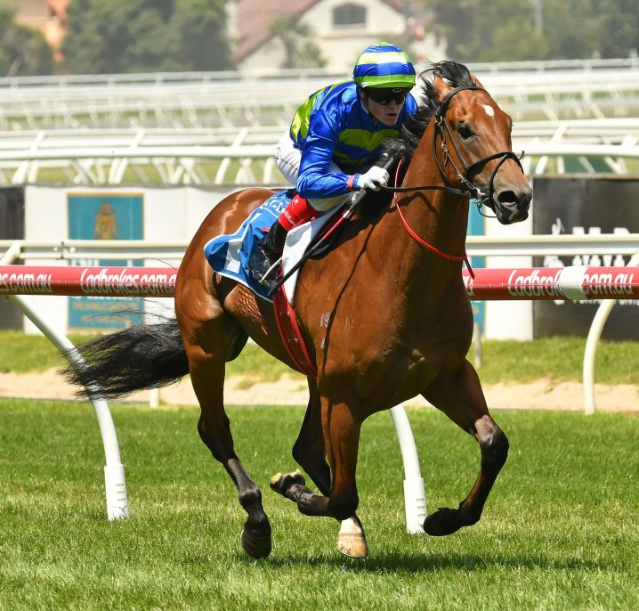 Jukebox to step up to 1200m second up