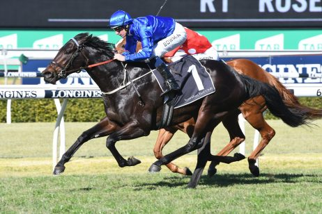 Plague Stone early favourite in 2018 Rosebud betting