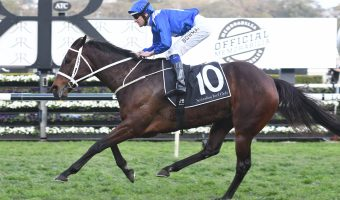 Winx claims 26th straight win with 2018 Winx Stakes victory