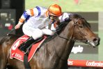 Hey Doc Heads 2020 Australia Stakes Field & Odds